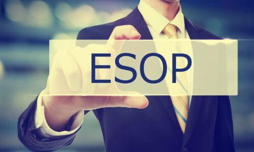 Cổ phiếu Esop là gì? Có nên phát hành không?