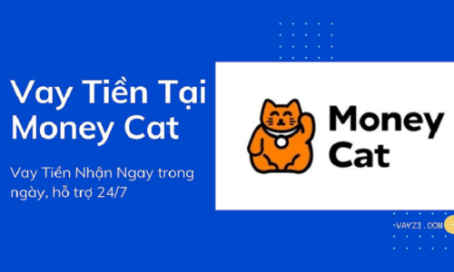 Hướng dẫn cách vay tiền MoneyCat chi tiết 2021